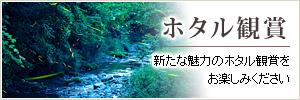 ホタル鑑賞マップ