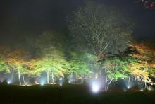 紅葉観賞マップ:秩父市大滝・三峰山周辺