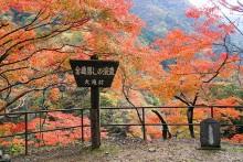 oochigawa1