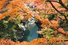 紅葉観賞マップ:秩父市大滝・大血川渓谷