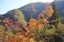 紅葉観賞マップ:秩父市大滝・滝川渓谷