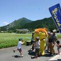 chichibu荒川春天荞麦的赏花节
