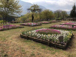 市民ガーデン