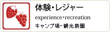 体験・レジャー