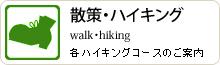 散策・ハイキング