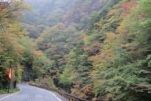 2013/10/23 (水):中津峡の様子