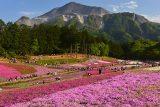 入選「武甲山を見上げれば」水之江 研二 様