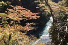 大血川渓谷(金蔵落し)