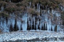 大滝・三十槌の氷柱の画像
