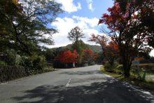 三峰山紅葉の画像