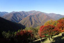 三峰山周辺の紅葉