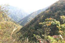 1031滝川渓谷