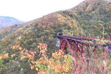 1109滝川渓谷紅葉
