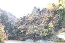 1117中津峡紅葉