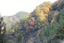 1101大血川渓谷