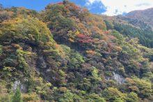 1108大血川渓谷(金蔵落し)