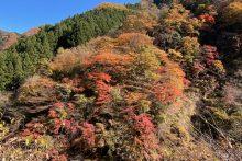 1115大血川渓谷(金蔵落し)