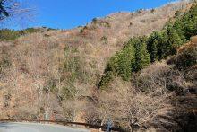 1123中津峡紅葉